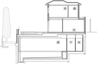 P1036 Cross Section